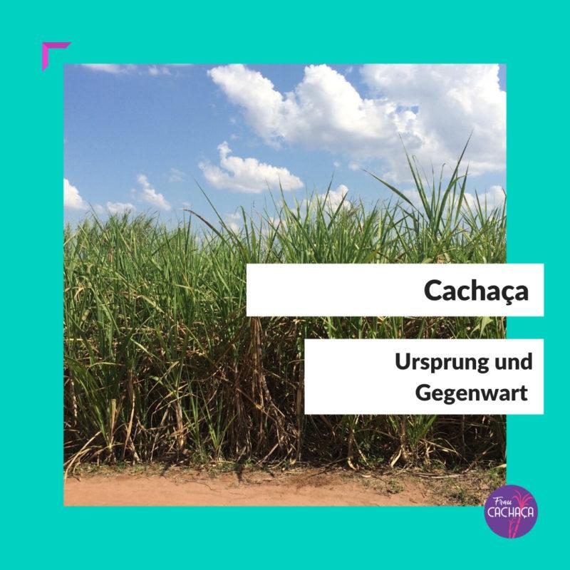Ursprung und Gegenwart Cachaça